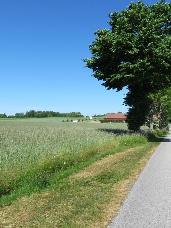 Gislovshammar, Sweden 22
