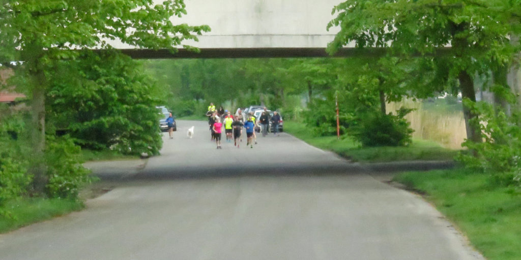 So many joggers.......
