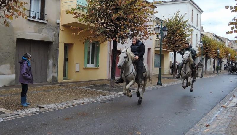 bull-run-street-out-rider-4aa