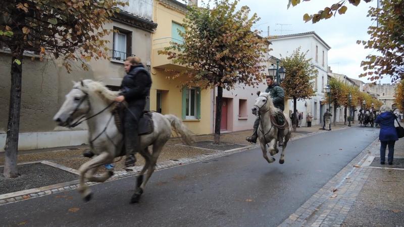 bull-run-street-out-rider-5