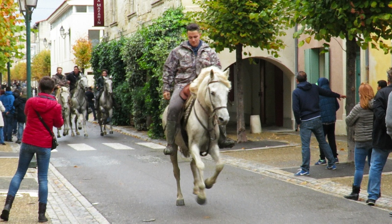 bull-run-street-out-rider-6