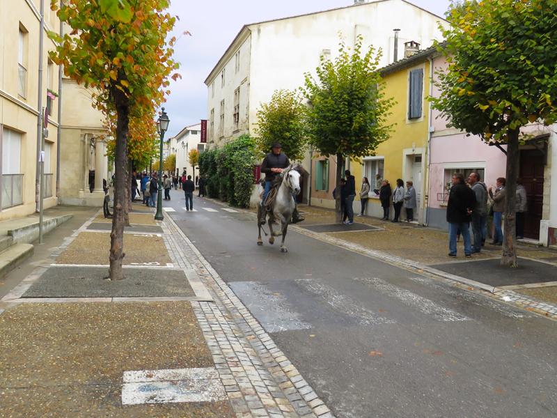 bull-run-street-out-rider-1