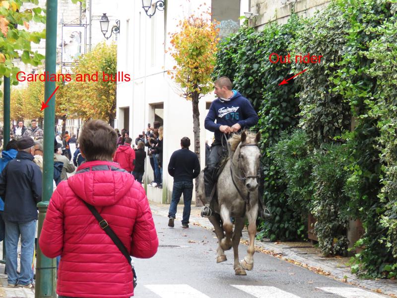 bull-run-street-out-rider-2