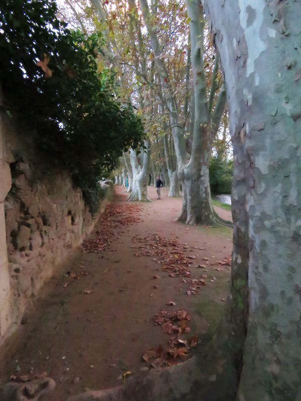 carcassonne-footpath-to-van-3