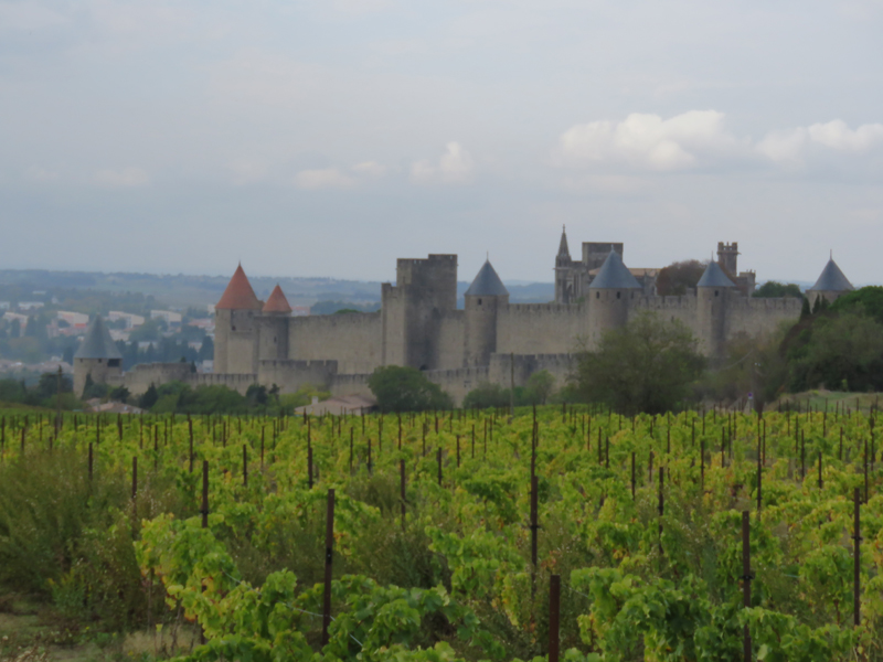 carcassonne-from-the-main-road-3