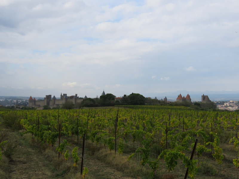carcassonne-from-the-main-road-4