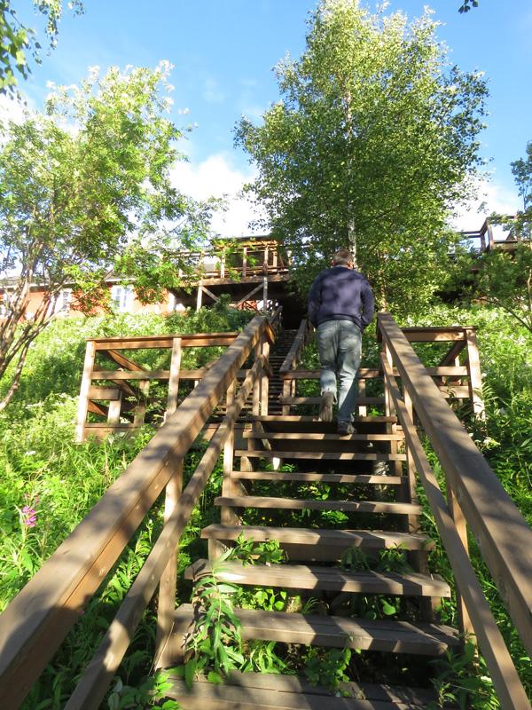 dam-steps