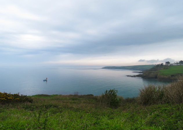 Beautiful view across to Maenporth