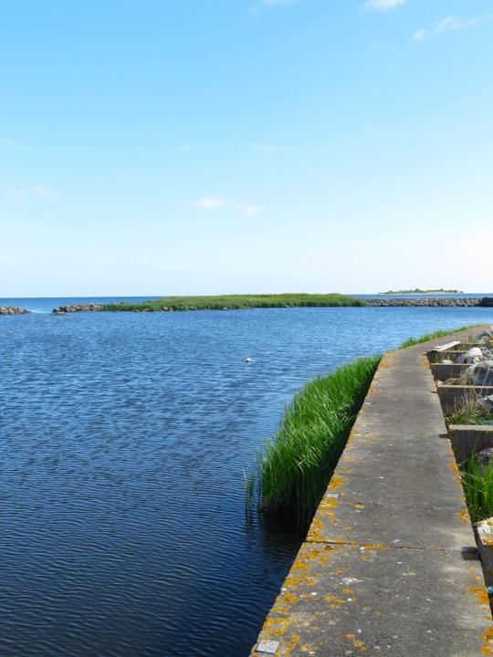 fjalking-harbour13