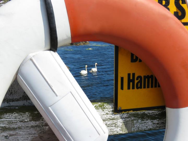 fjalking-harbour9