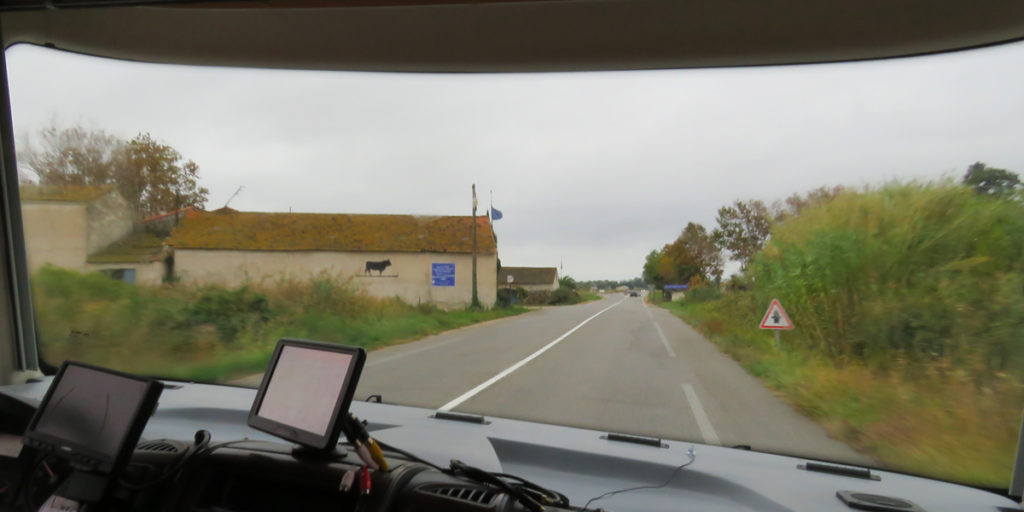 journey-to-aigues-mortes-black-bull-2