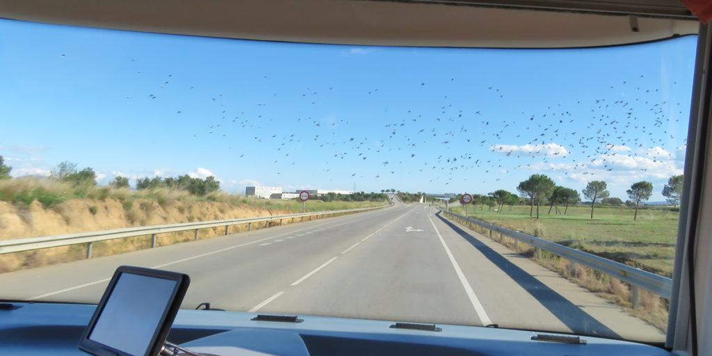journey-to-pamalos-5