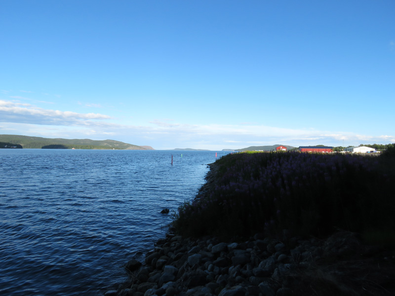 koppmanholm-6