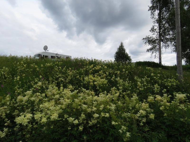koppmanholm-7