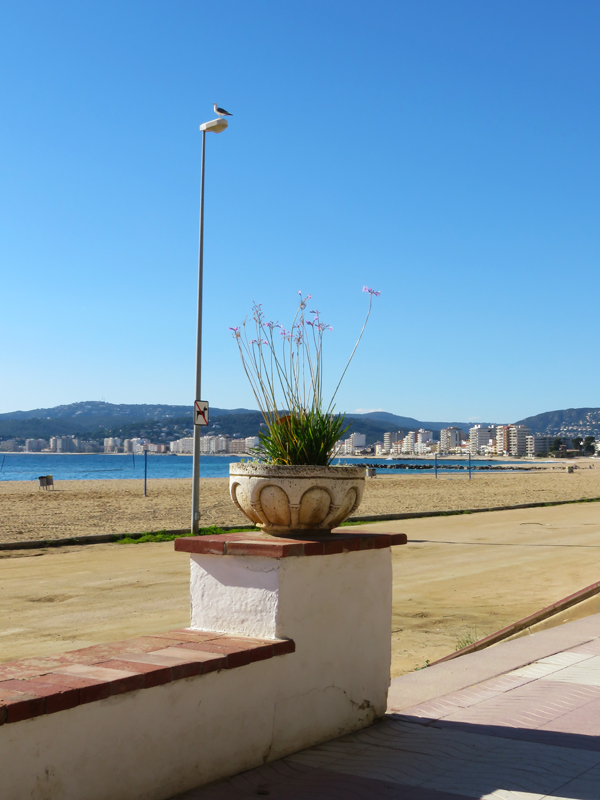 palamos-day-two-13