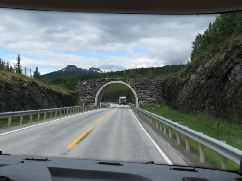 road-to-tromso-5