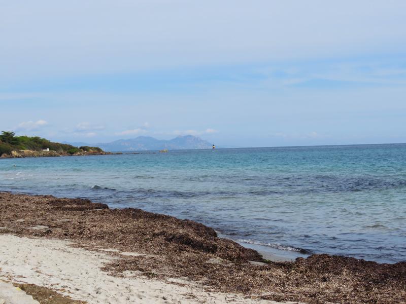 the-beach-5