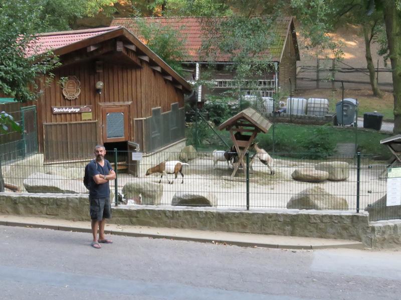 wildlife-park-3