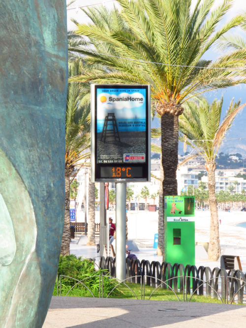 Proof that it's nice and warm in Albir.