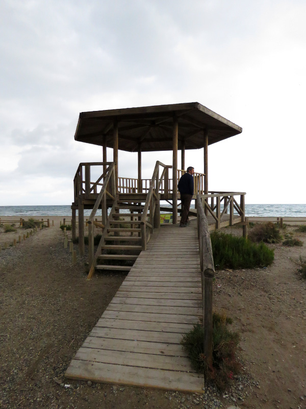 19 Las Salinas