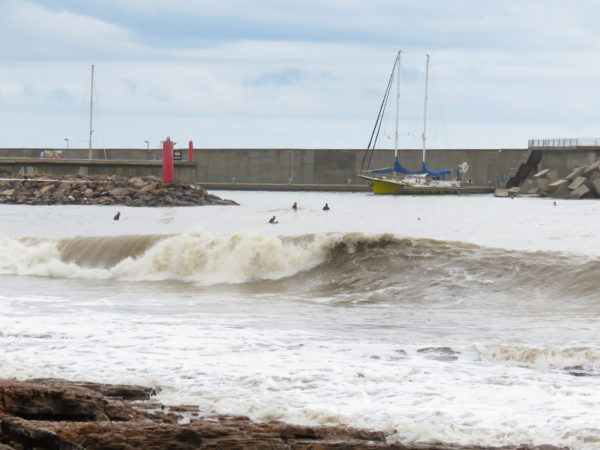 A group of surfers were bobbing around in the sea.
