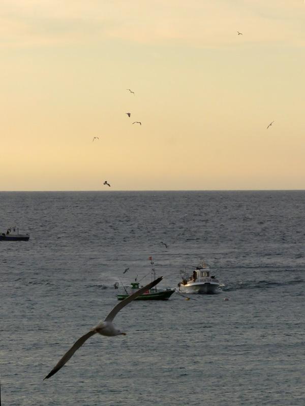07 Isleta del Moro