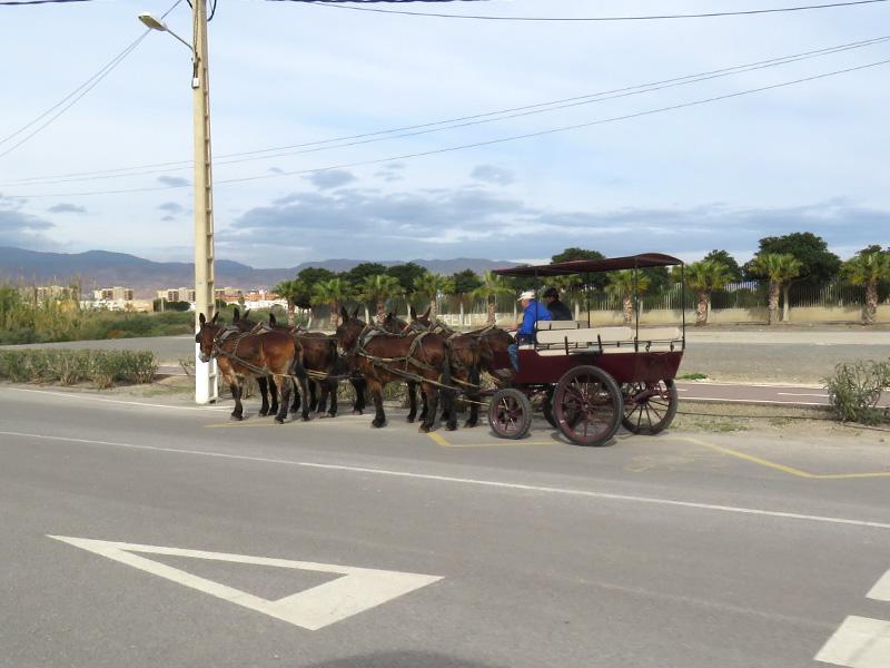 19a Journey to Alba