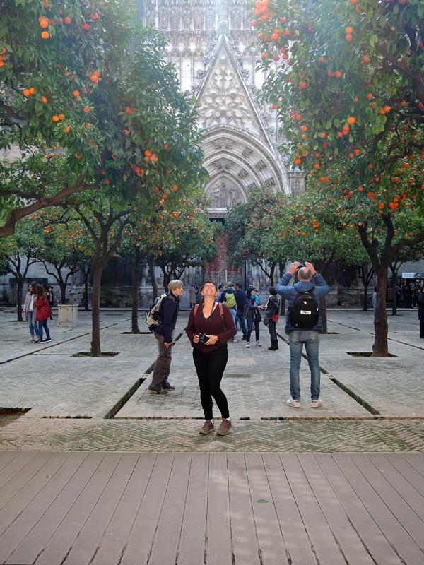 22 Seville