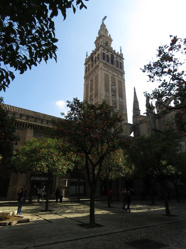 25 Seville