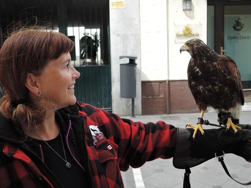 07 Bird of Prey