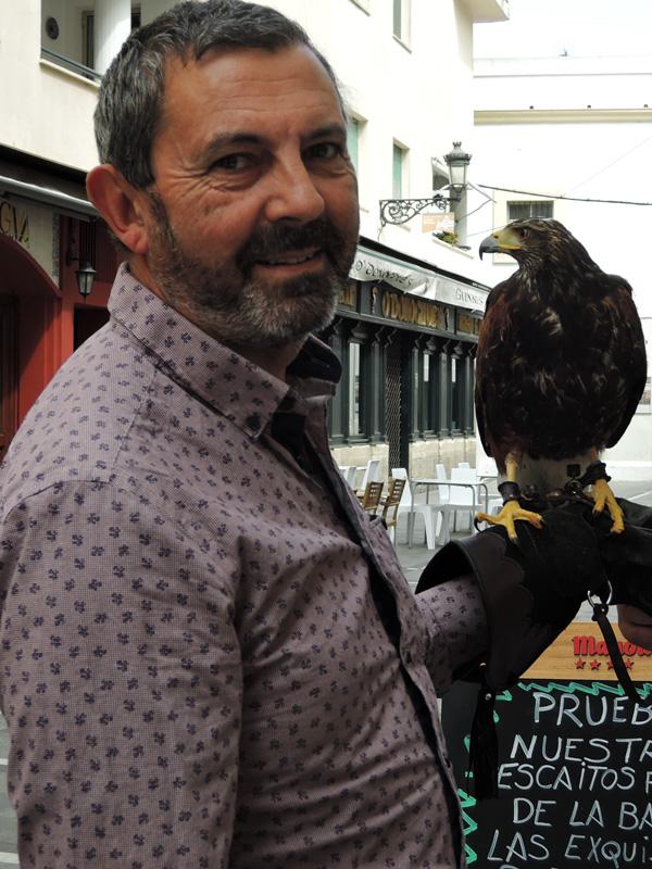 08 Bird of Prey