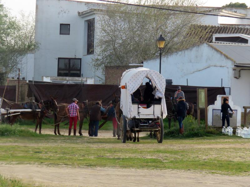 13 Arriving El Rocio