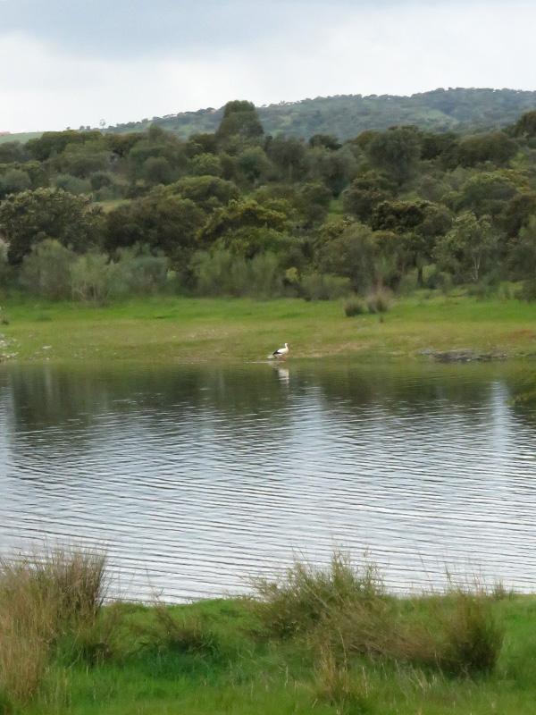 03 Dam near Terena