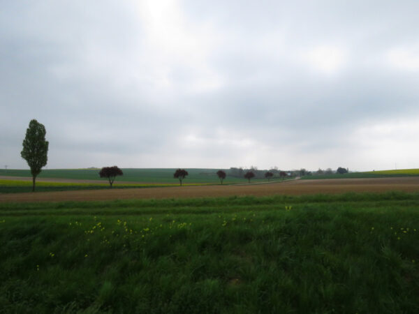 Beautiful countryside.