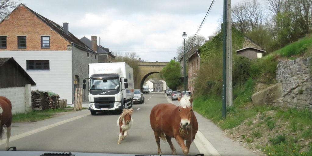 10 Arriving Rochefort, Belgium