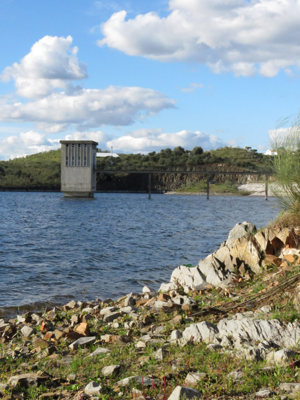 17 Dam