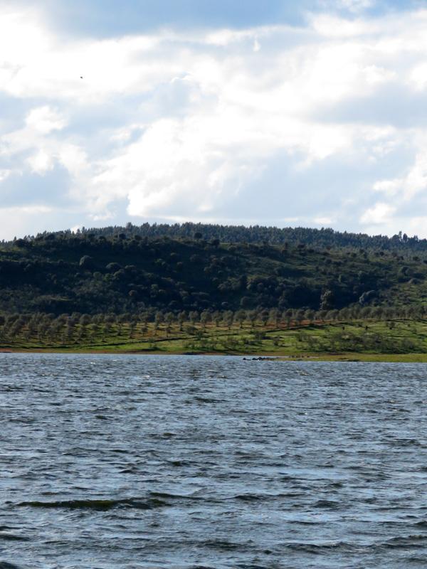 19 Dam