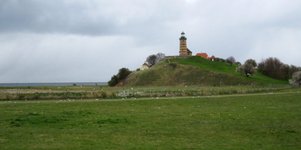 On the island we saw a stripey lighthouse and lots of sea birds.