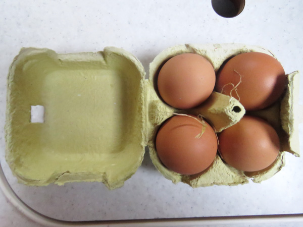 Thank you to the hens who laid these lovely eggs this morning.