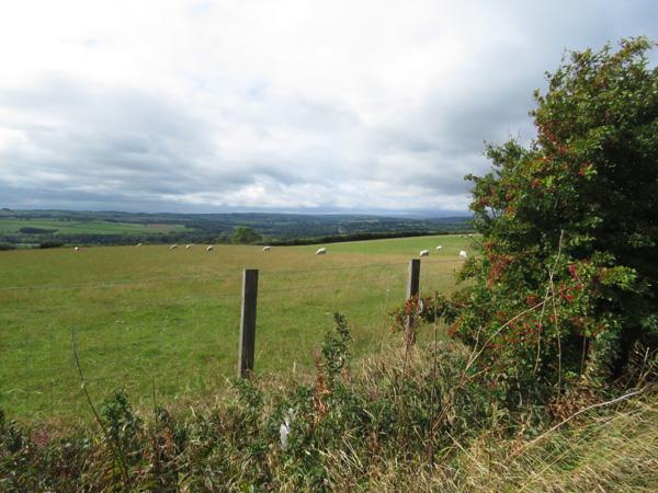 The beautiful British countryside.