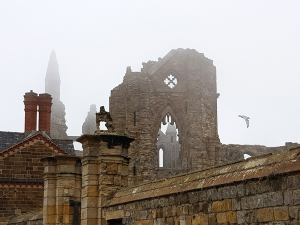 Very atmospheric but I wish I'd had my camera to photograph the mist swirling around the Abbey