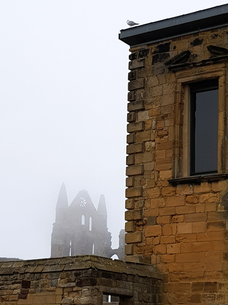 Whitby Abbey being watched by a seagull.